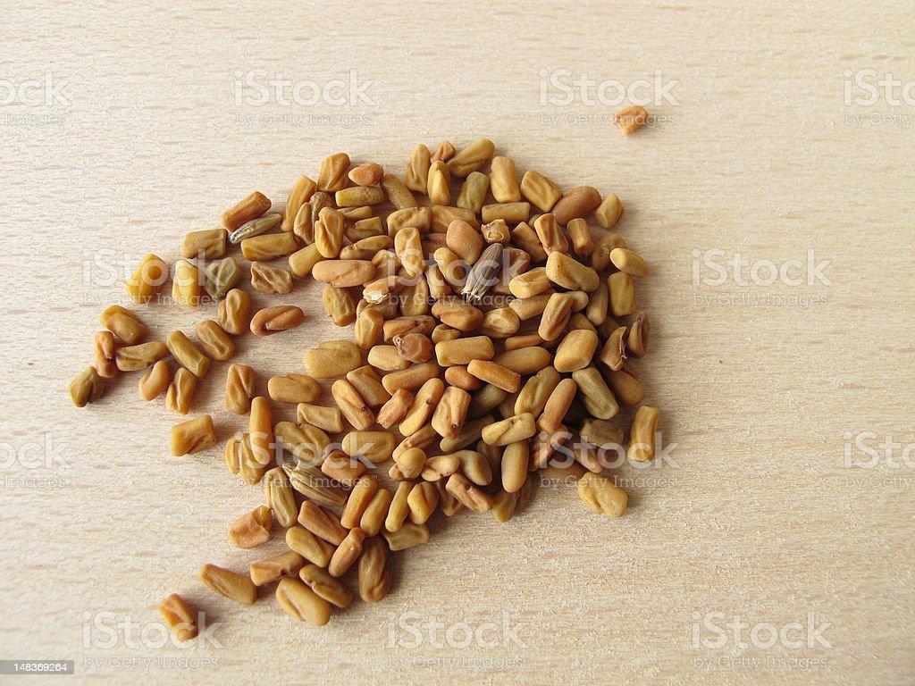 Fenugreek seeds, Foenugraeci semen stock photo