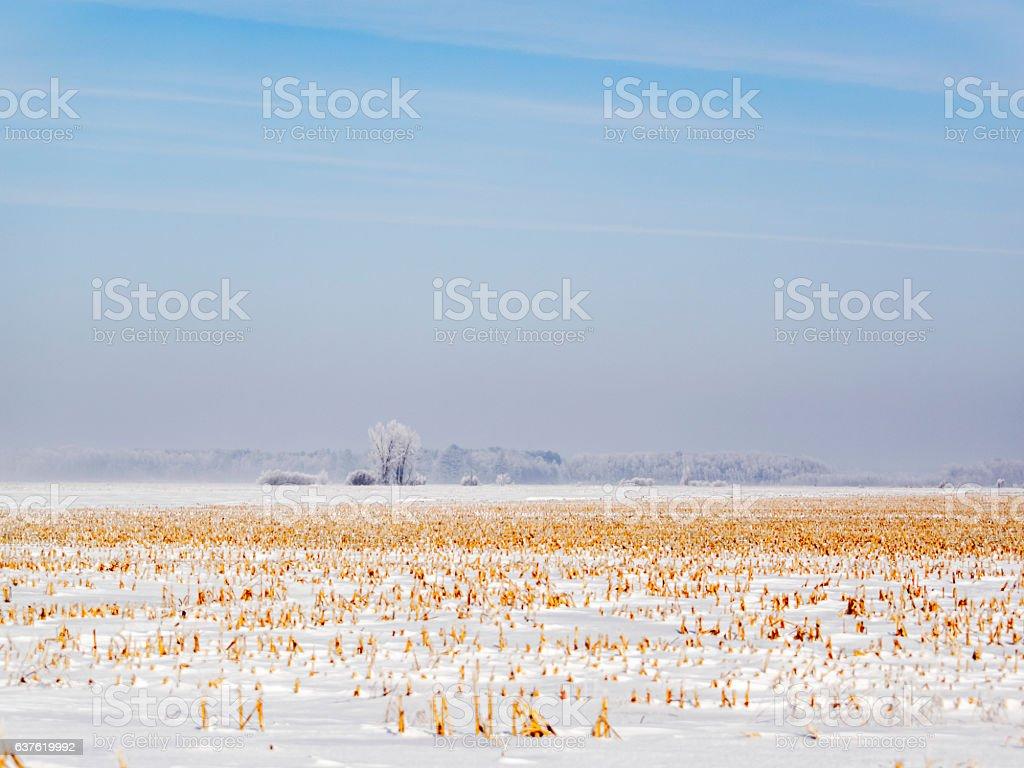 Ferme d'hiver stock photo