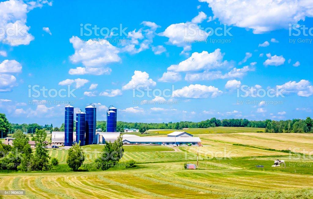 Ferme laitière stock photo