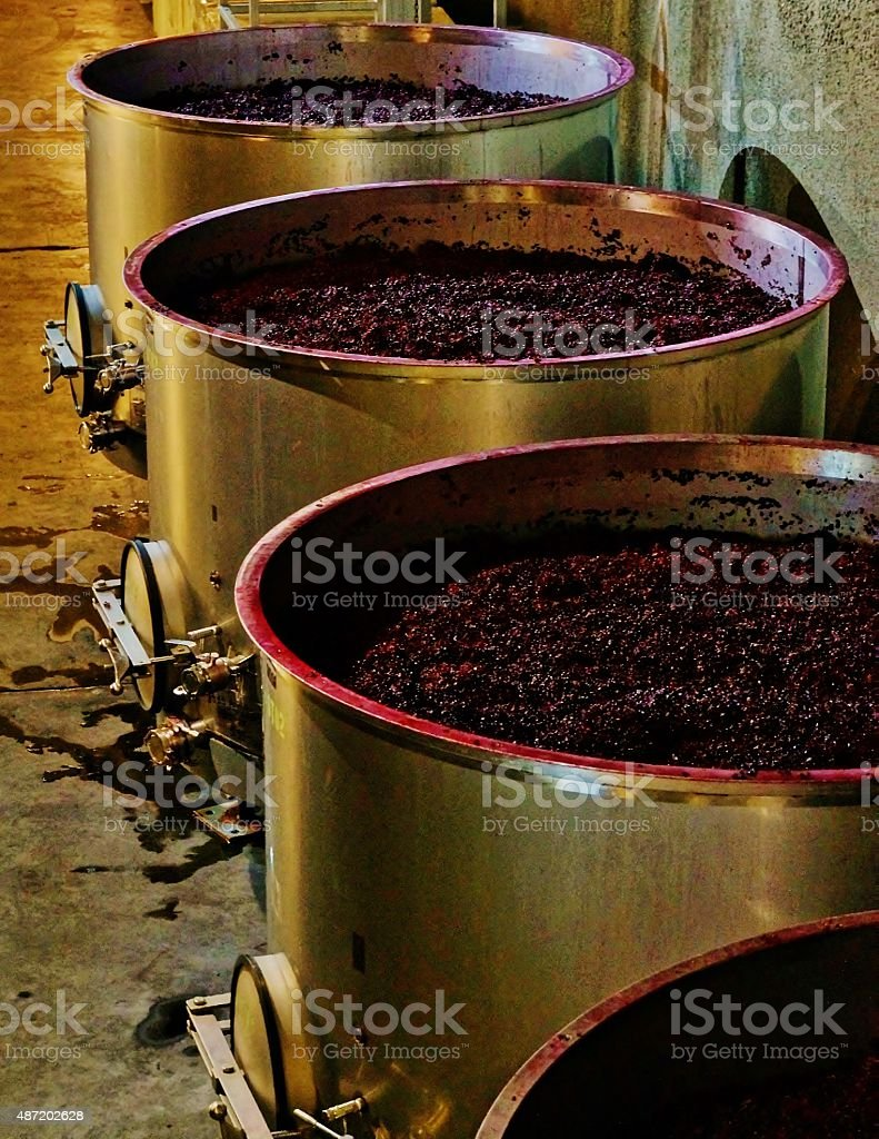 Fermentation Tanks stock photo