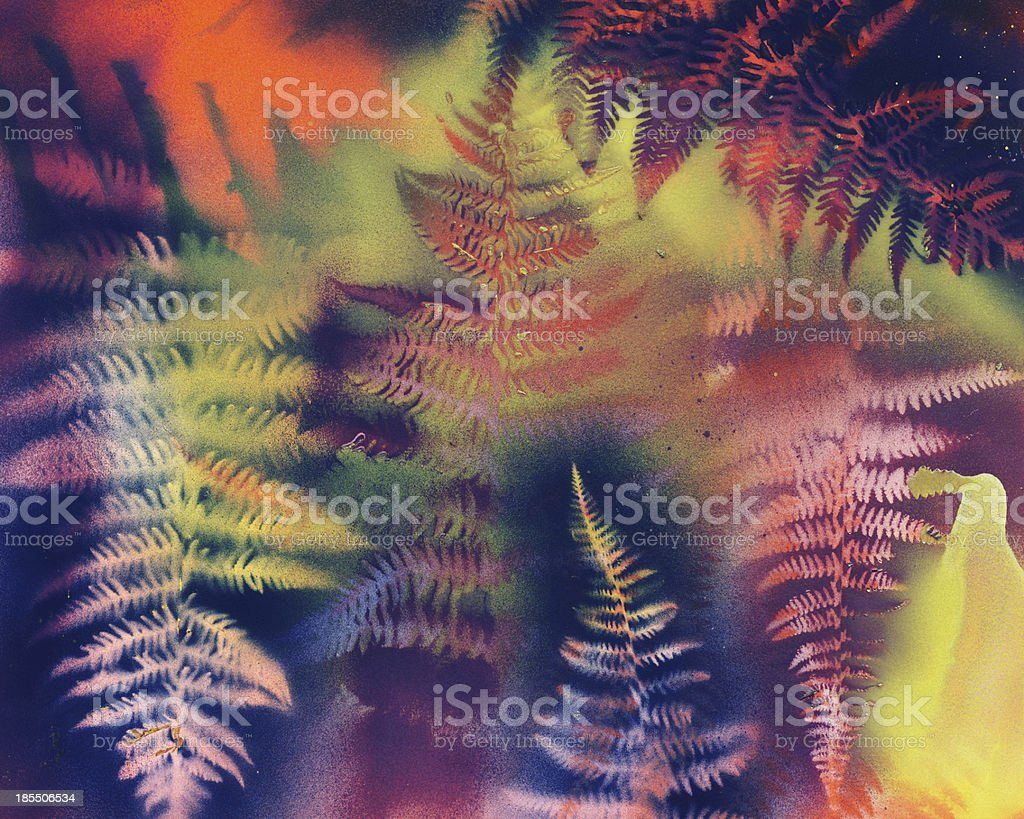 Fern Abstract stock photo