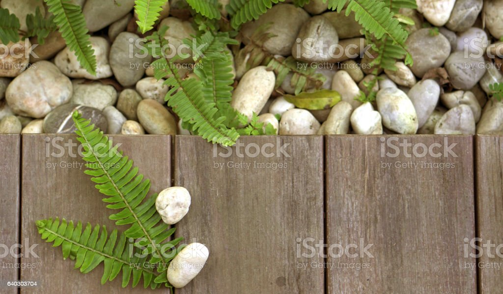 Fern and pebble stone on wood floor texture natural background stock photo