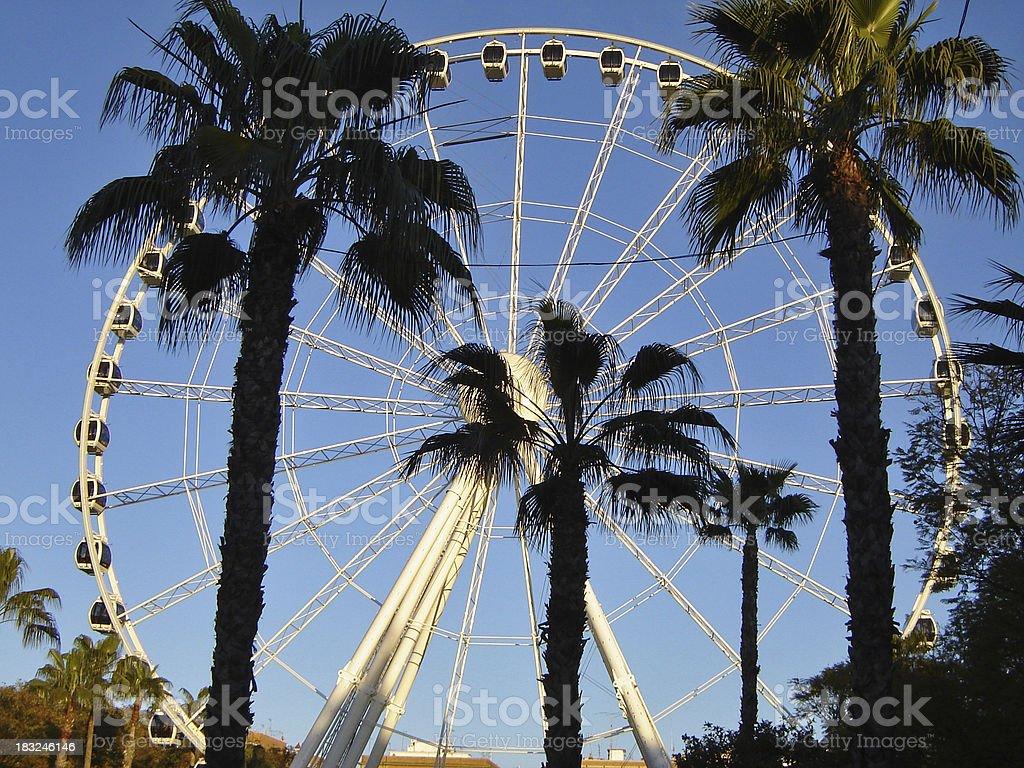 Ferris Wheel and Palms stock photo