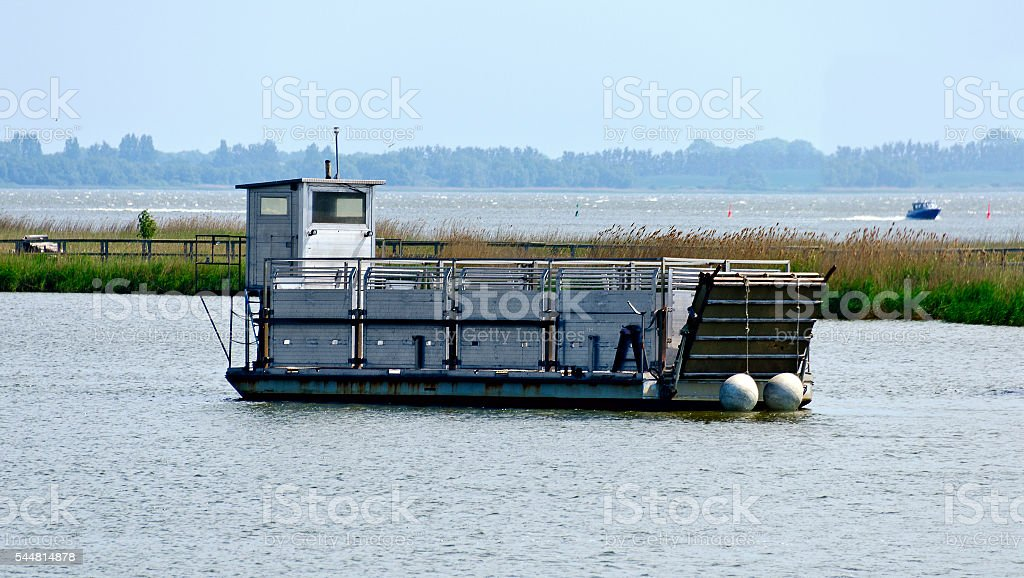 ferry boat for transportation of animals stock photo