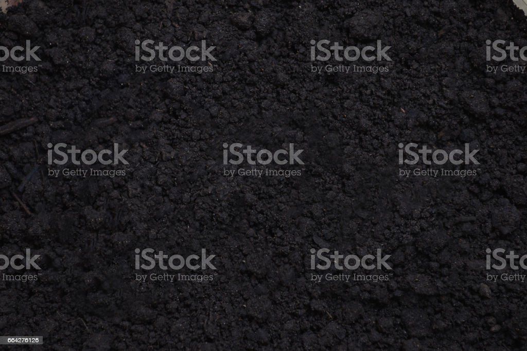 Fertil soil background texture, close up, stock photo