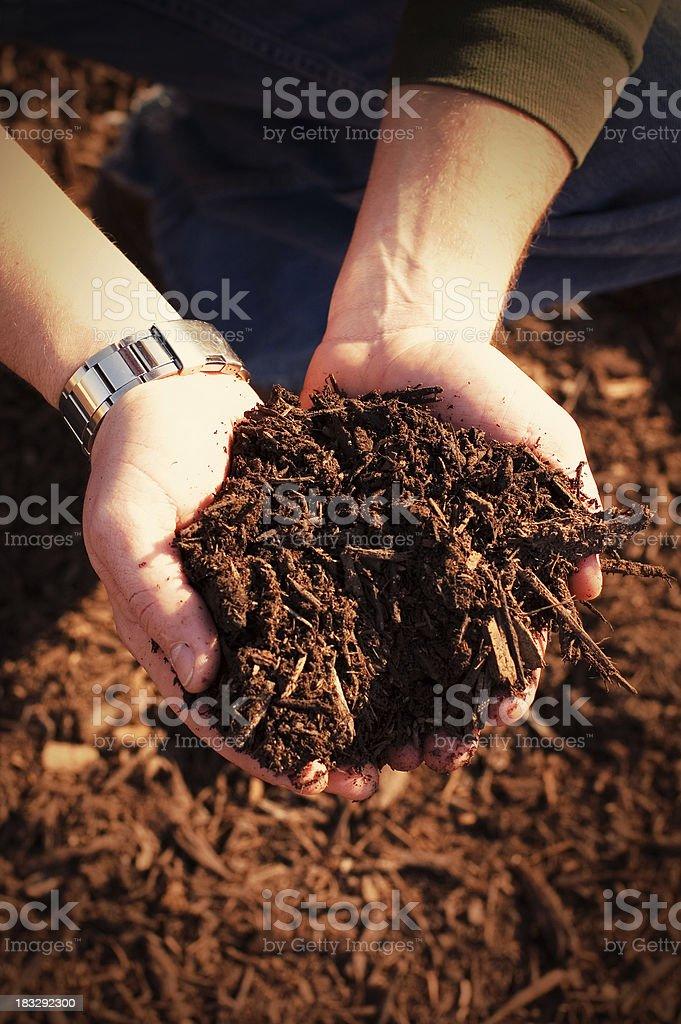 Fertile Earth stock photo