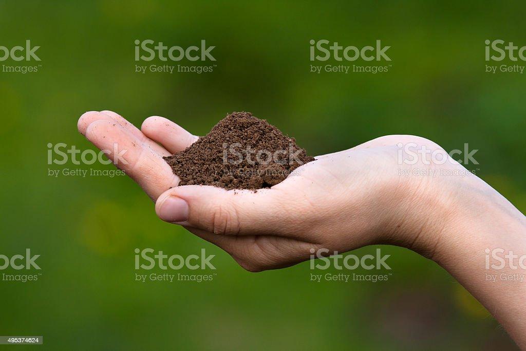 fertile soil in hands of women stock photo
