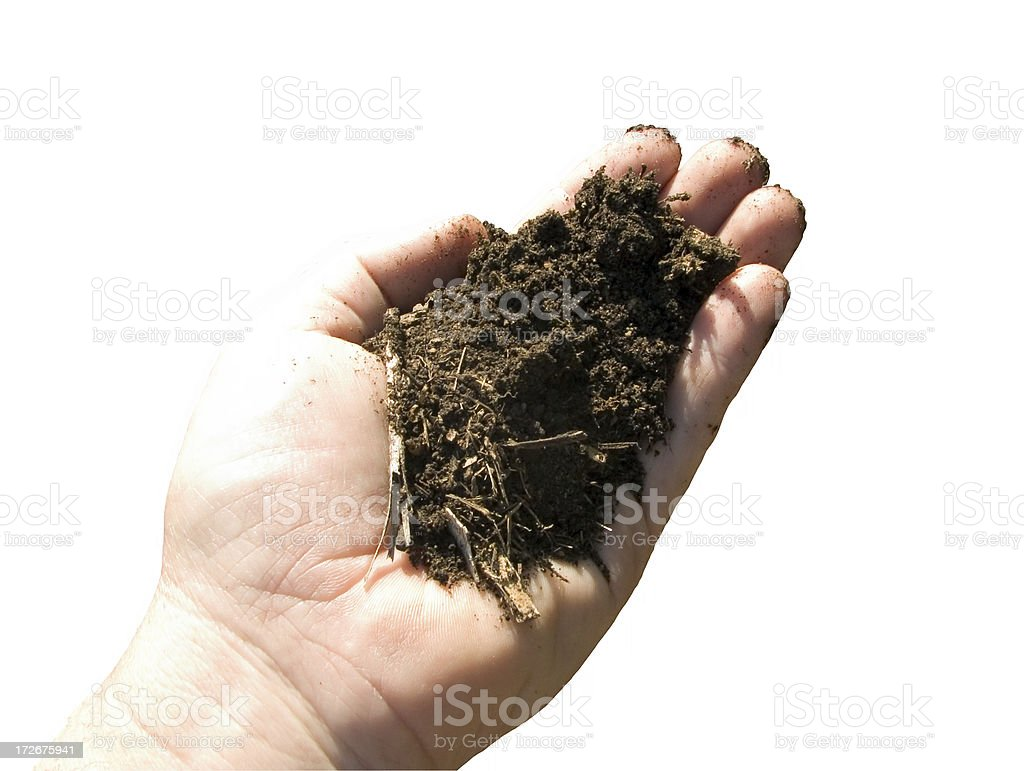 Fertile soil sample: high key with clipping path stock photo