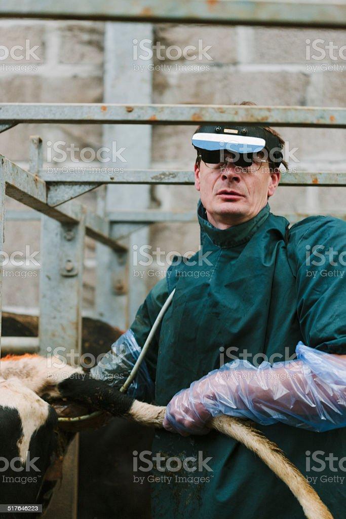 Fertility testing stock photo