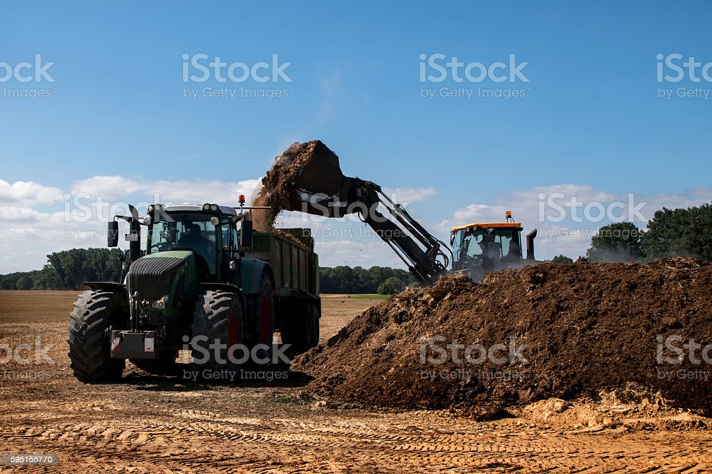 fertilize the field, excavator fills manure in the trailer stock photo