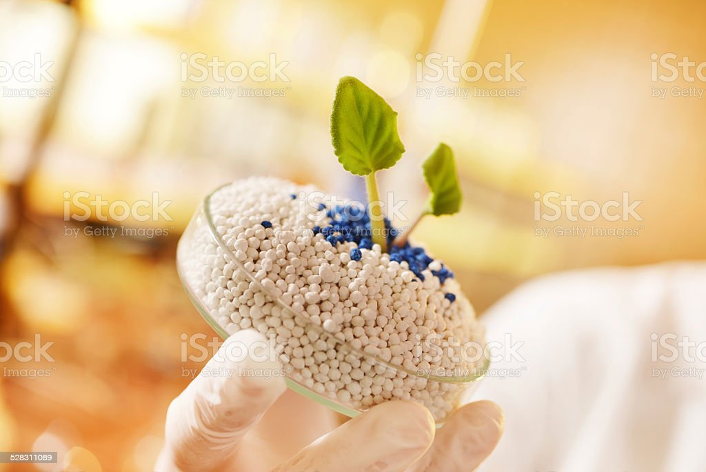 fertilizer laboratory, agriculture stock photo