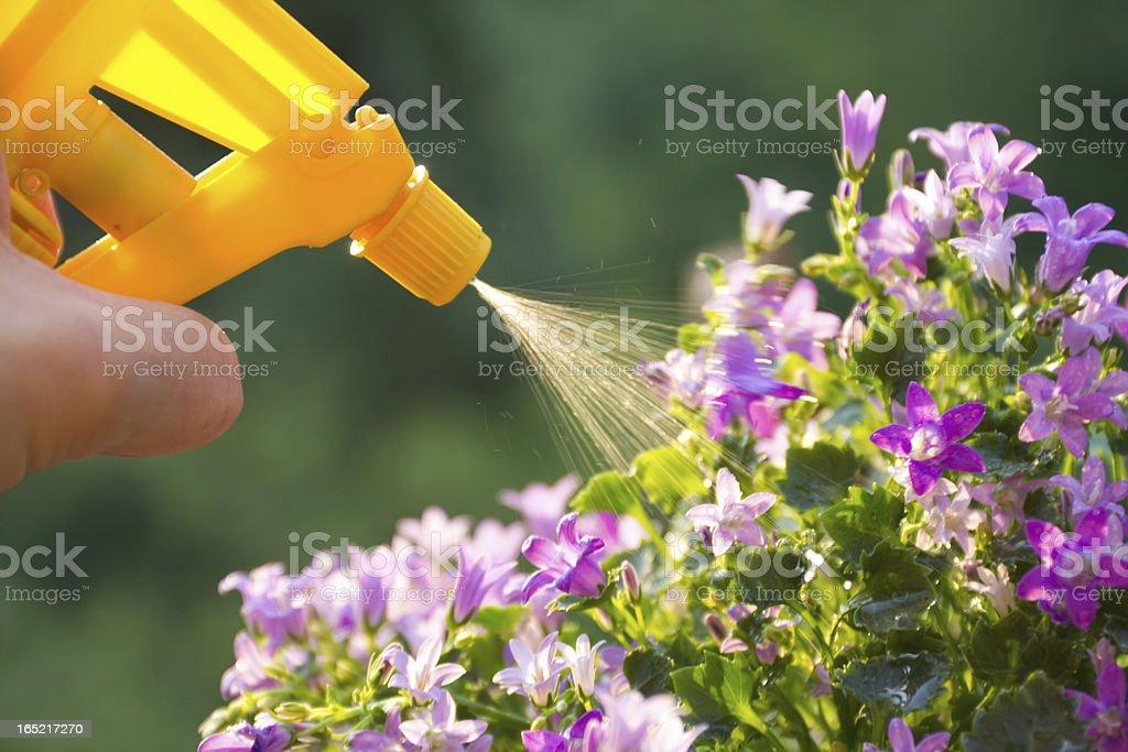 fertilizer royalty-free stock photo