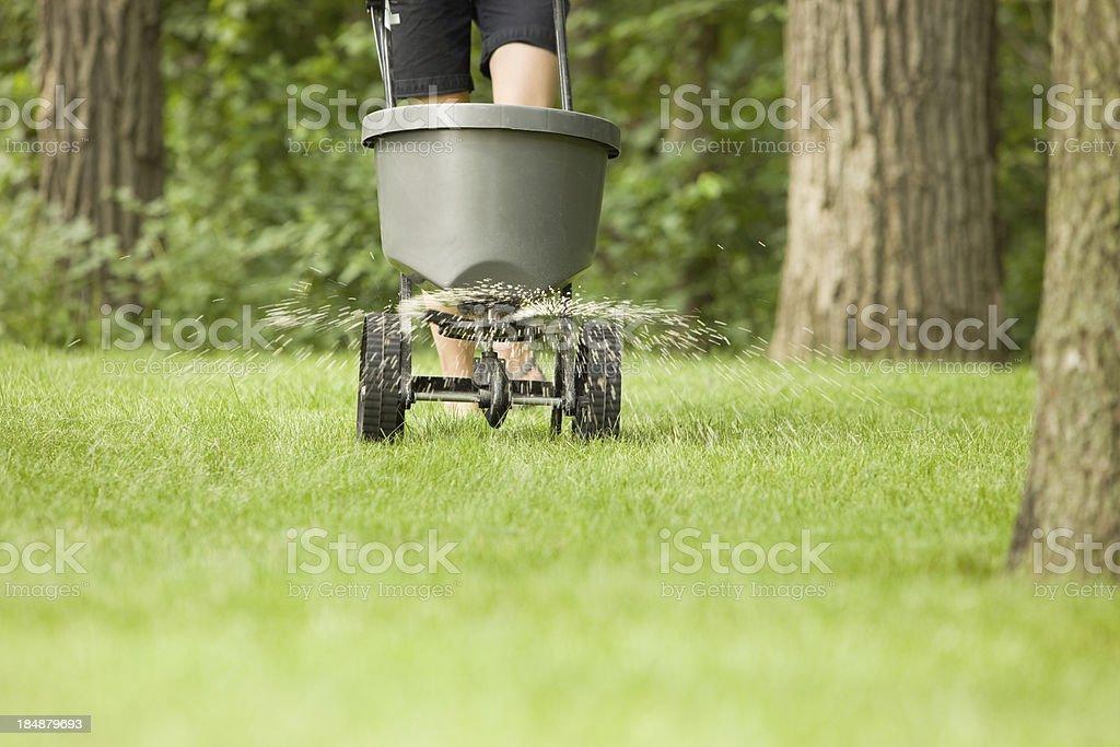 Fertilizer Spreader with Pellets Spraying on Grass stock photo