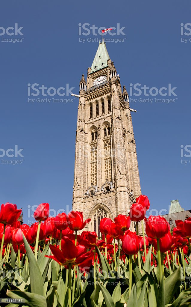Festival of Tulips at the Canadian Parliament Building stock photo