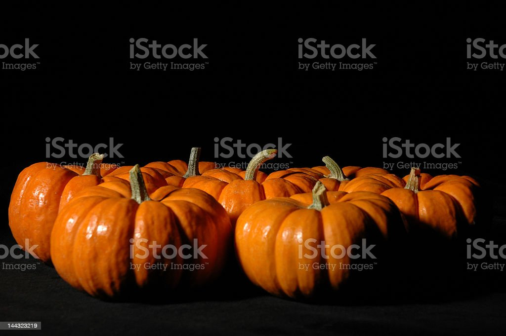 festive pumpkins royalty-free stock photo