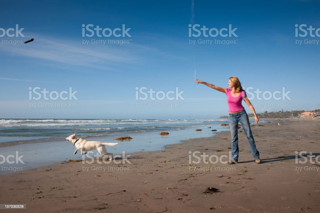 Fetching royalty-free stock photo