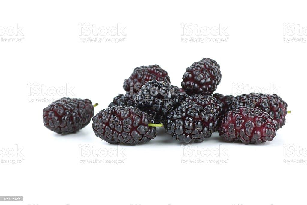 Few black mulberries stock photo