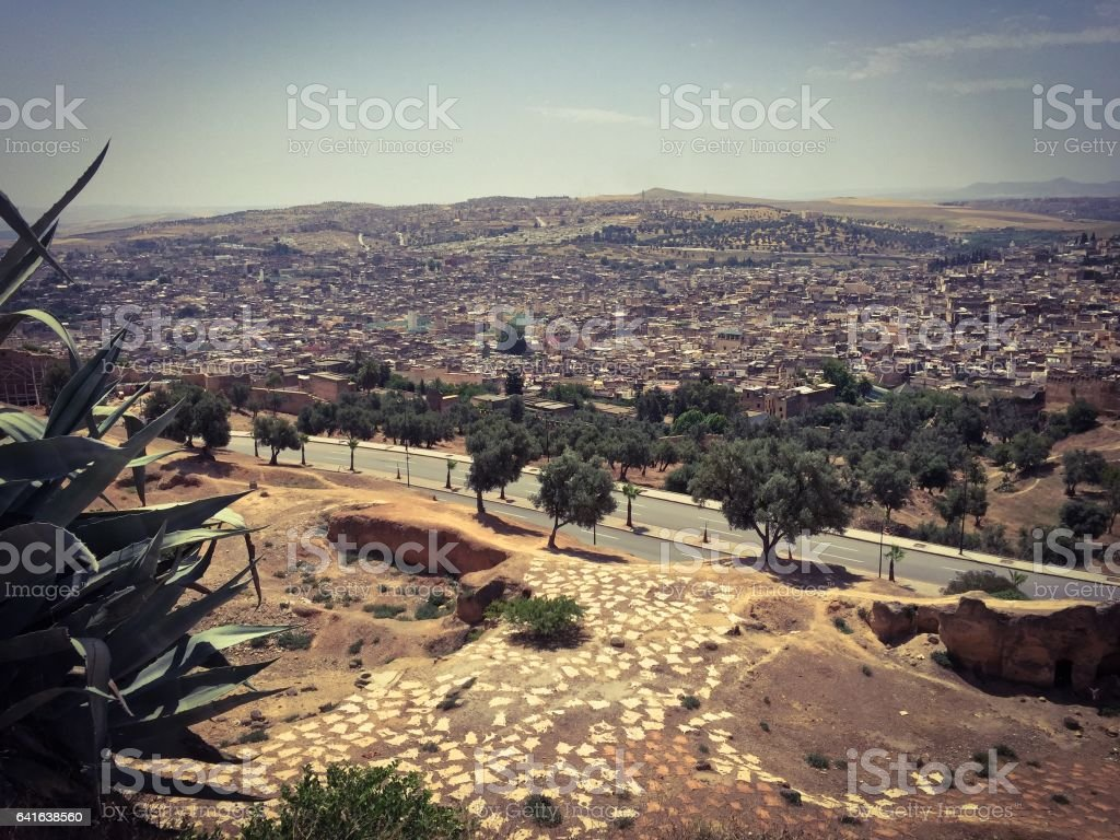 Fez, Morocco view with goat and sheep skins stock photo