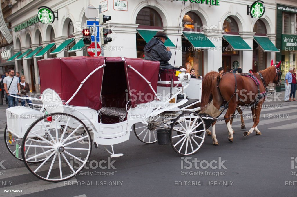 Fiaker's carriage in vienna stock photo