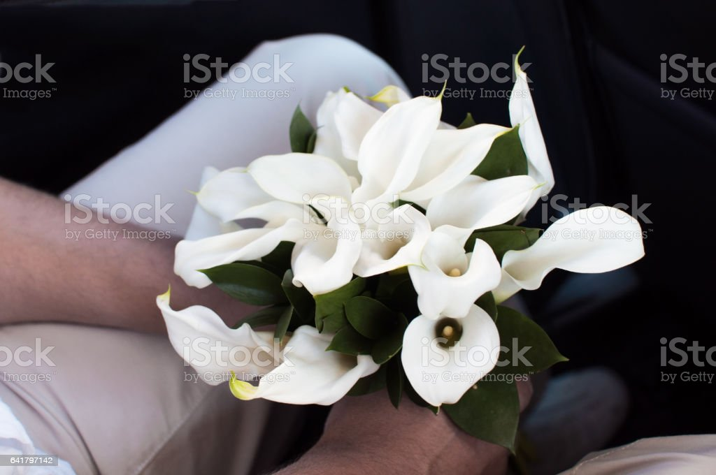 Fiance holding a wedding bouquet of callas flowers stock photo