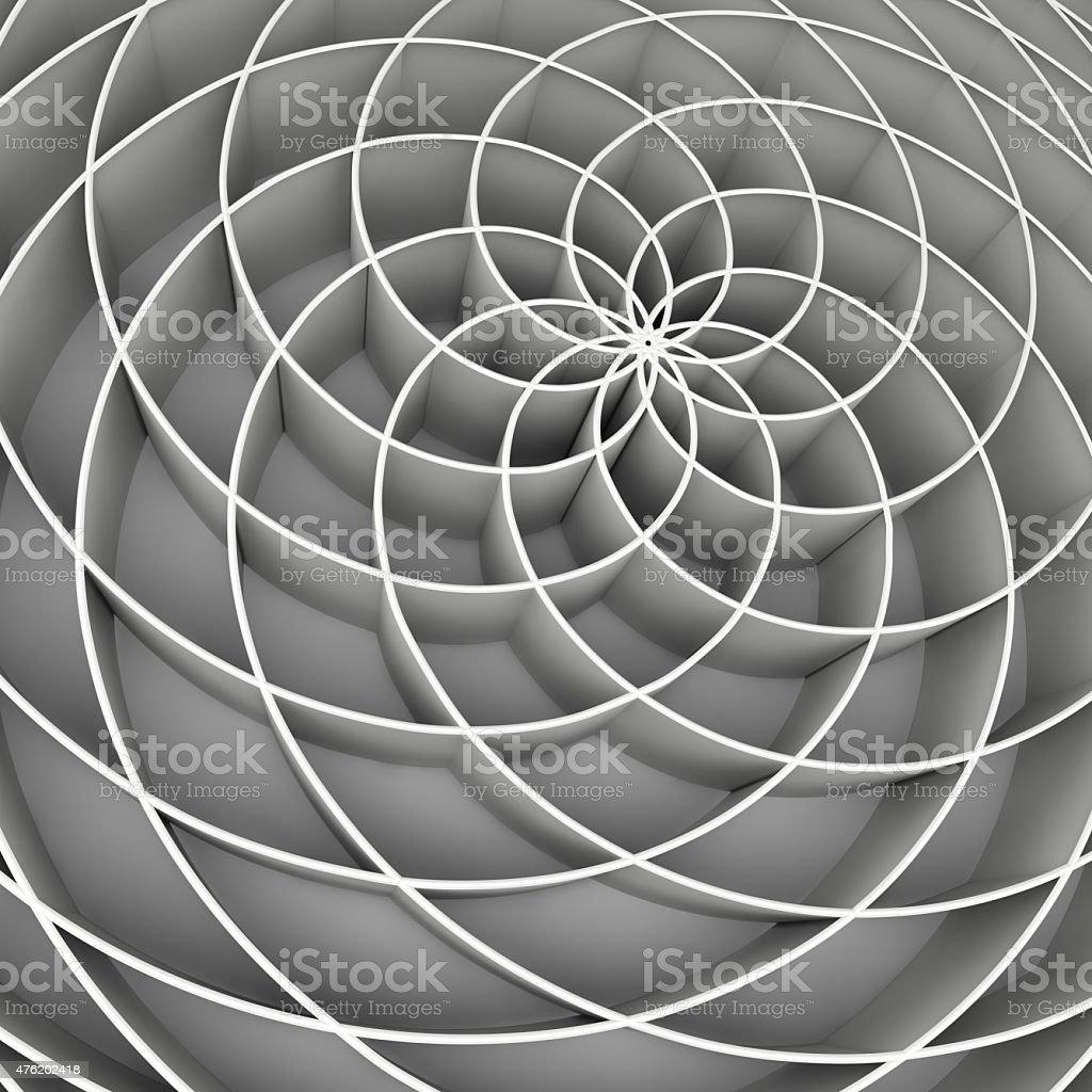 fibonacci flower stock photo