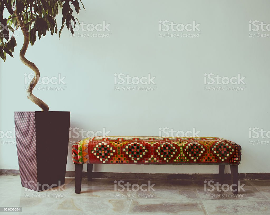 Ficus tree in living room next to a sofa stock photo
