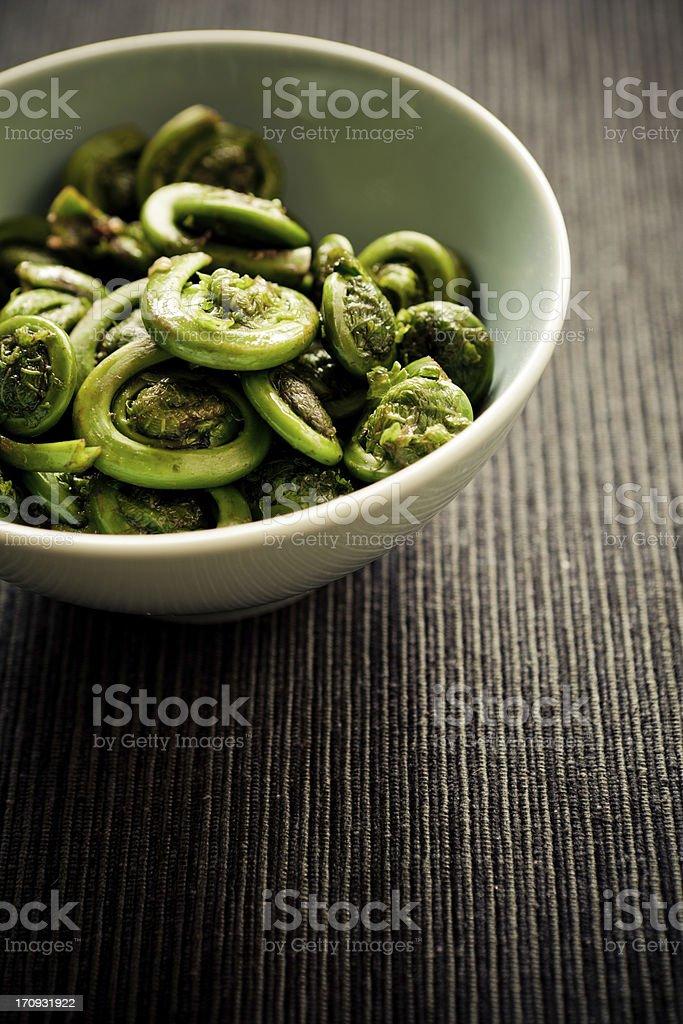 Fiddlehead fern stock photo