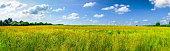 field and blue sky panorama