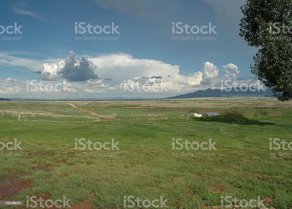 Field and Clouds royalty-free stock photo