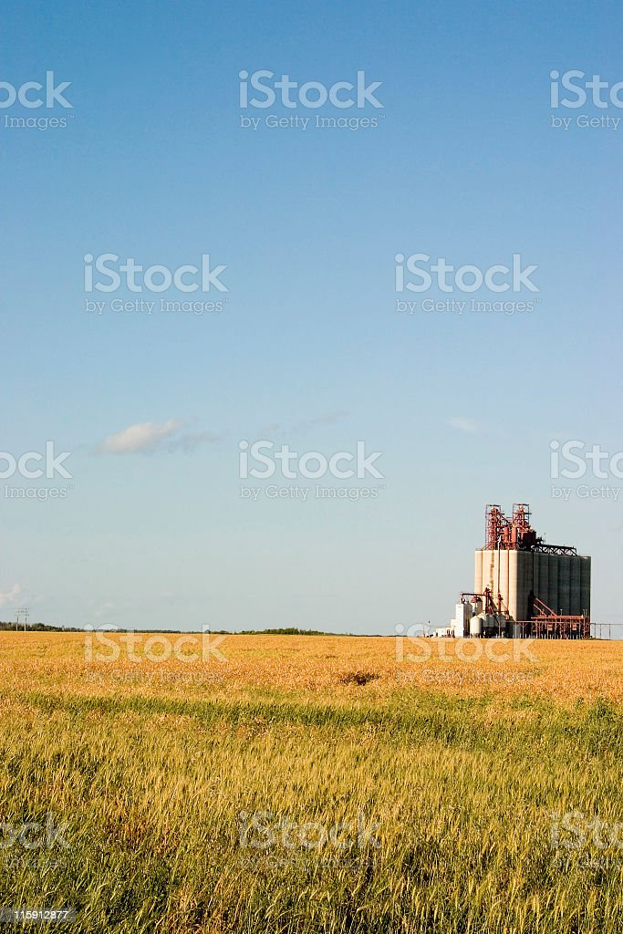 Field and elevator stock photo