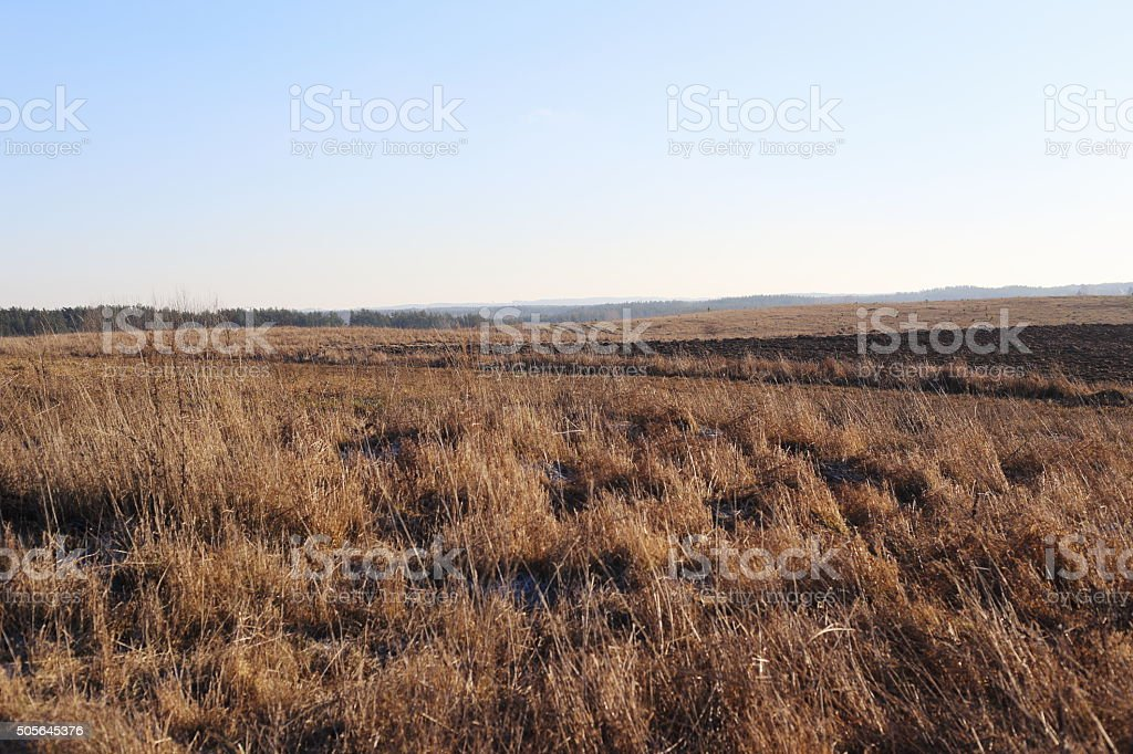 field and medow royalty-free stock photo