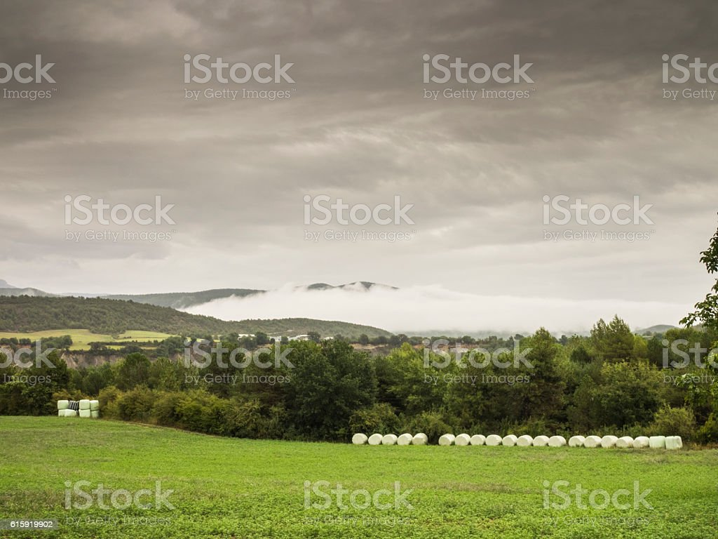 Field and mountain stock photo
