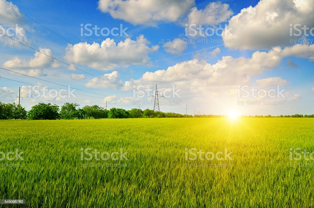 field and sunrise in the blue sky stock photo