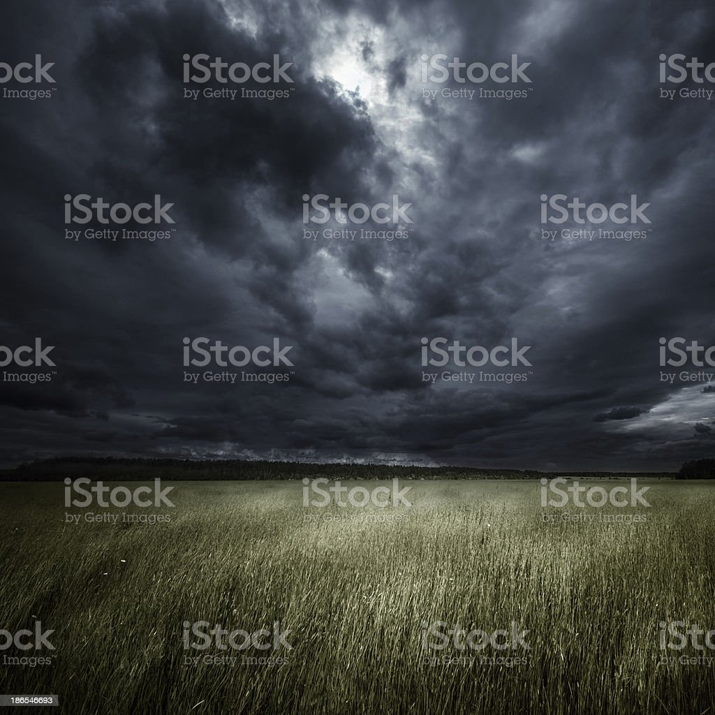 Field at storm stock photo