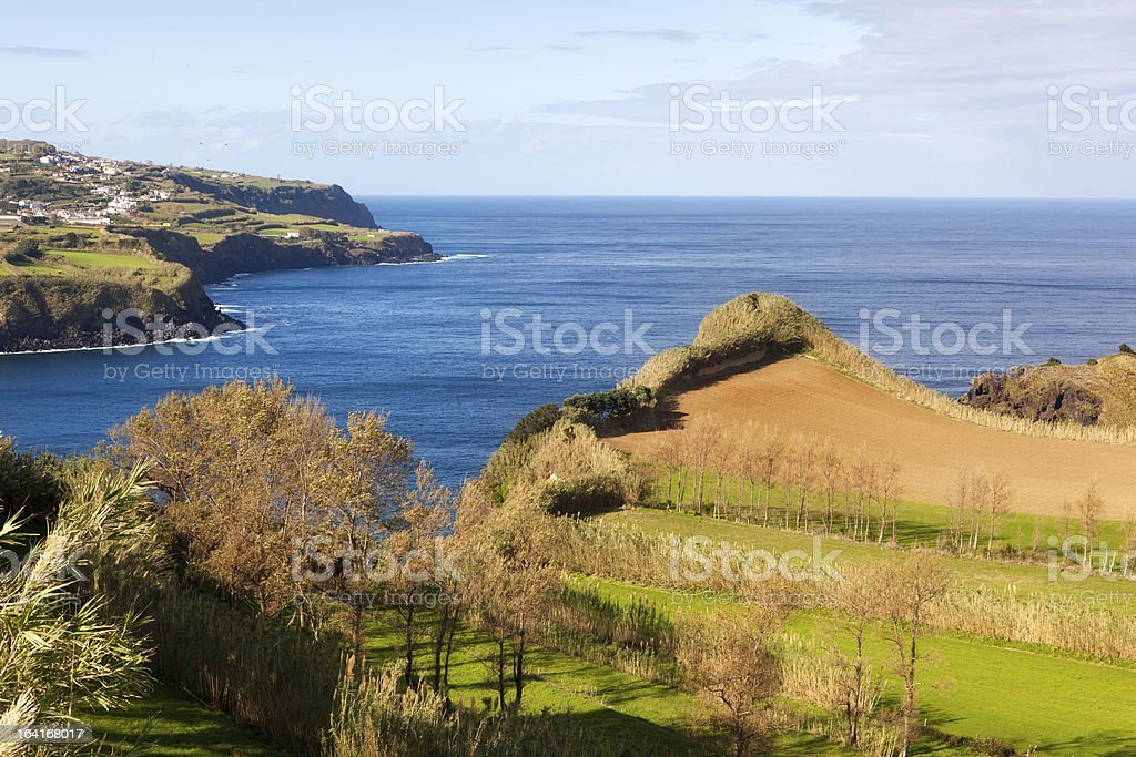Field at the ocean coast, Azores, Portugal royalty-free stock photo