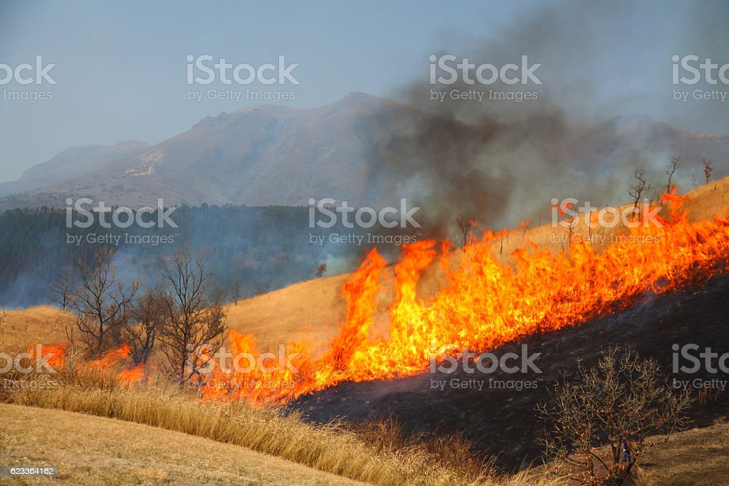 Field burn in the plateau stock photo