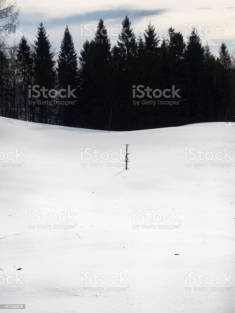Field covered by snow stock photo