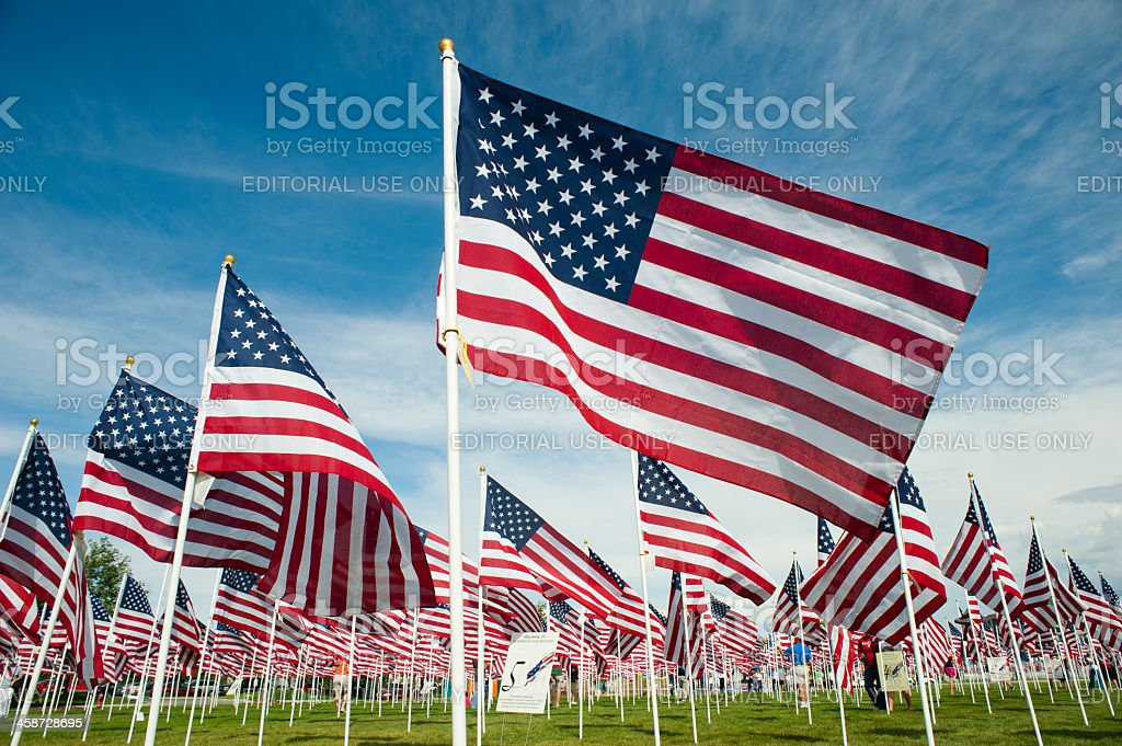 Field Full of Waving American Flags stock photo