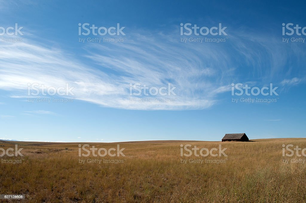 Field Grass with Barn and Cirrus Clouds stock photo