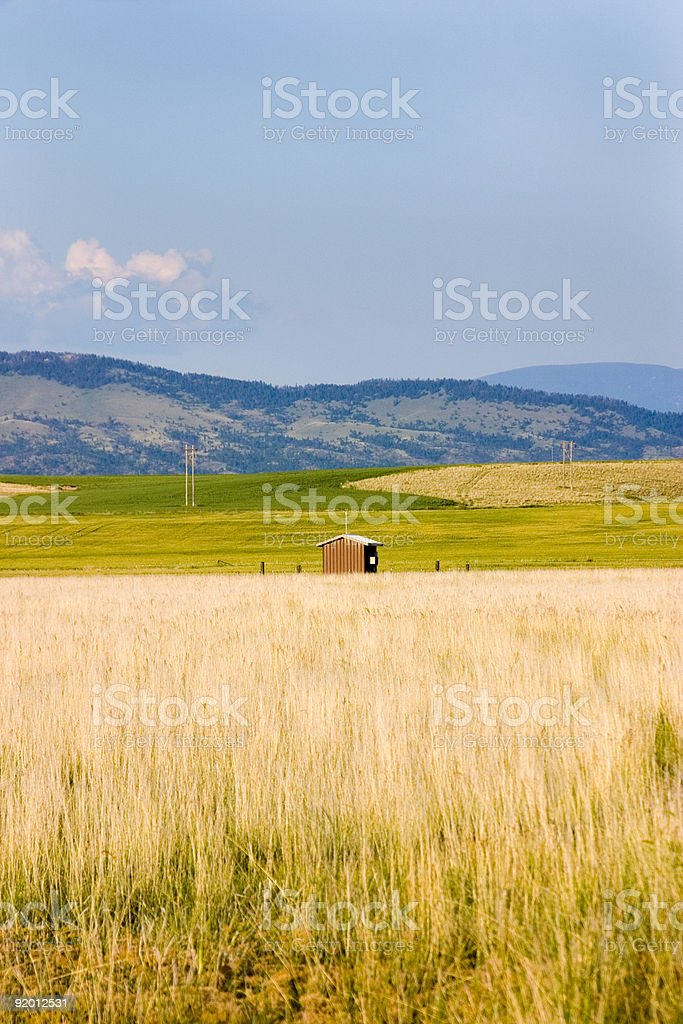 Field in Helena with a Shed royalty-free stock photo