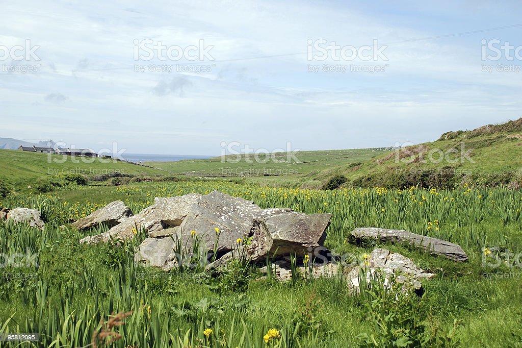 Field in Ireland royalty-free stock photo