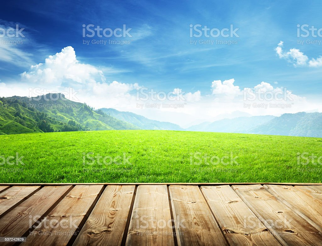 field in mountain and wood floor stock photo