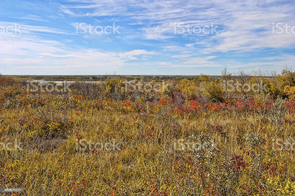 Field Near The South Saskatchewan Riverbank in Fall stock photo