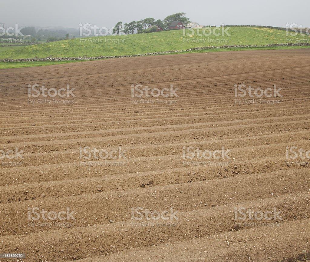 Field Newly Plowed royalty-free stock photo