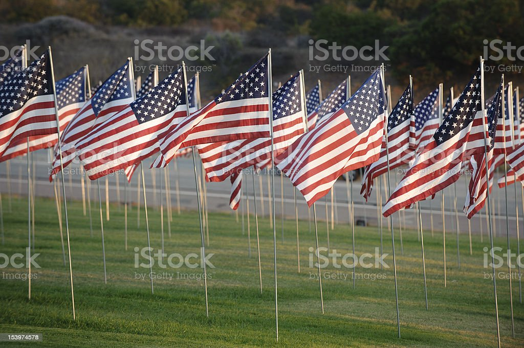 field of american flags by the roadside royalty-free stock photo