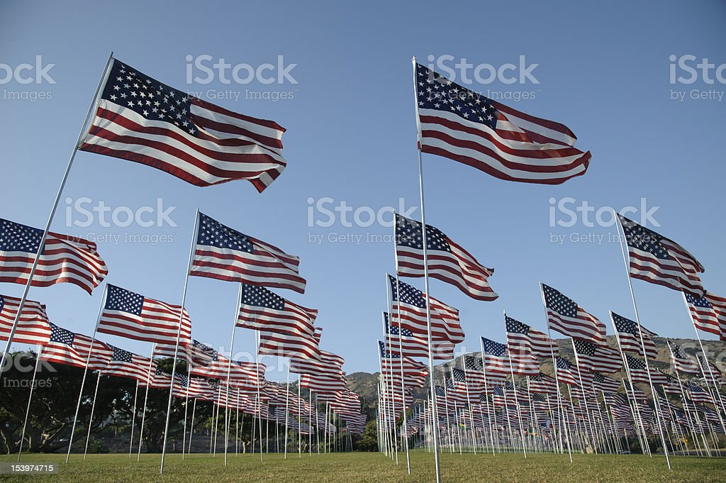 field of flags against a blue sky royalty-free stock photo