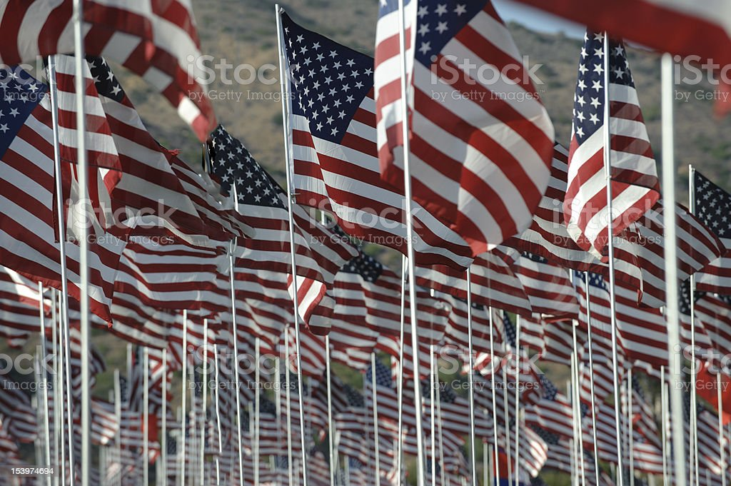 Field of flags close up royalty-free stock photo