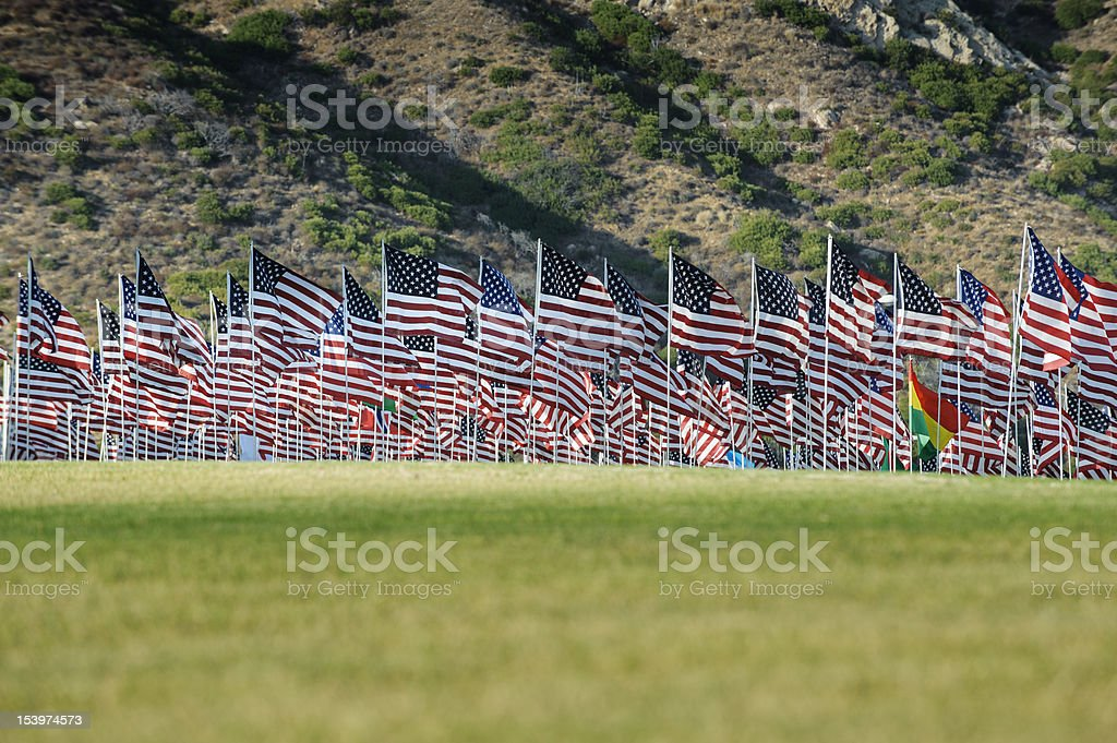 Field of flags royalty-free stock photo