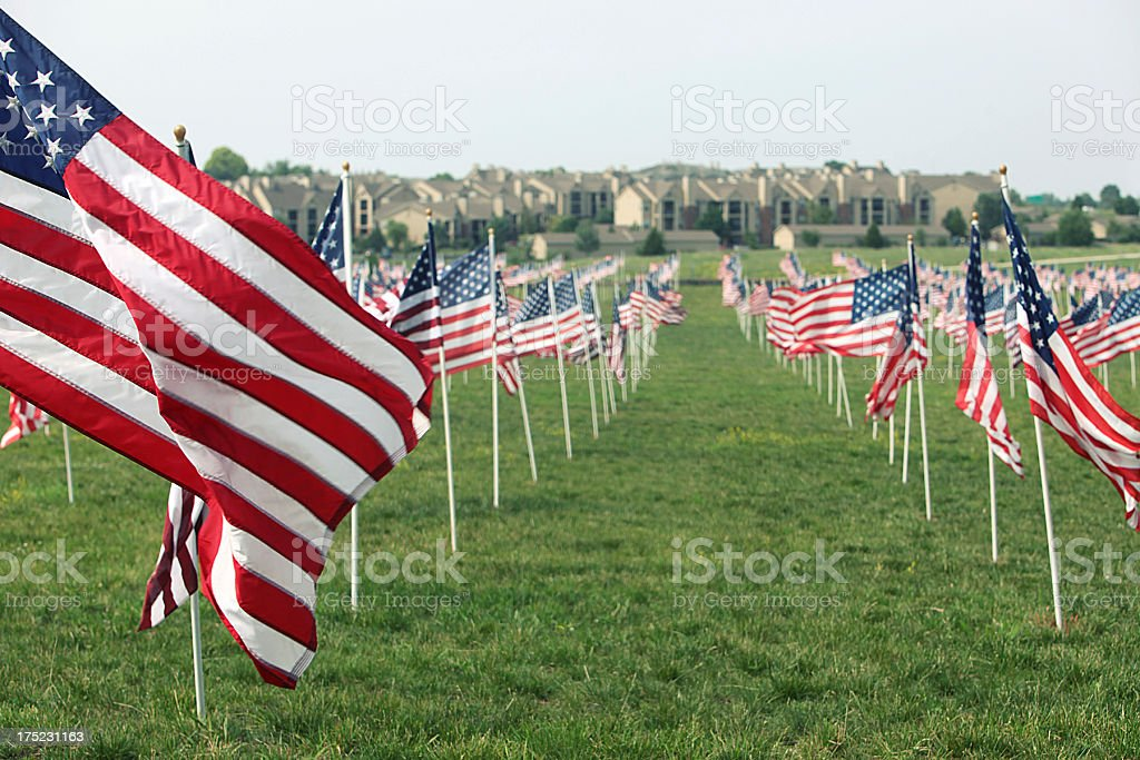 Field of Flags stock photo