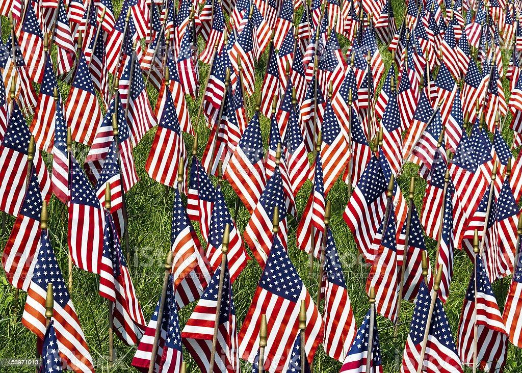 Campo di bandiere foto stock royalty-free